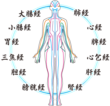 経絡イメージ図